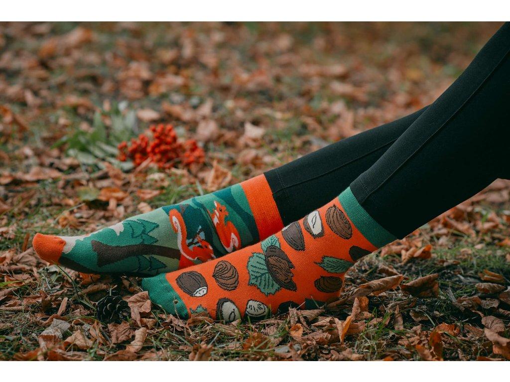 Ponožky VEVERKY Spox Sox (Barva Oranžová, Velikost 36-39)