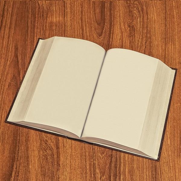 Ultimatives Handbuch für die Auswahl eines Luftentfeuchters im Jahr 2019