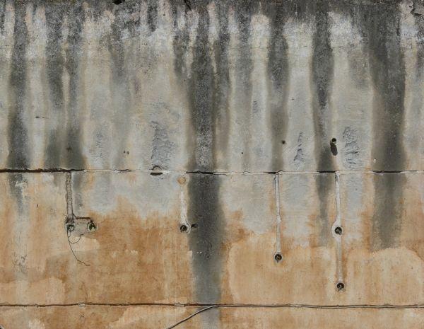 Wie man die Wände trocknet und Schimmel an der Wand verhindert?