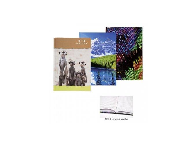 Záznamní kniha CONCORDE A5 čtvereček, 96 listů