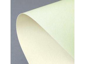 ozdobný papír Prime zelená/ivory 220g, 20ks