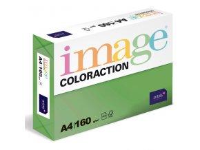 barevny papir image coloraction a4 160g intenzivni tmave zelena 250 ks 5888