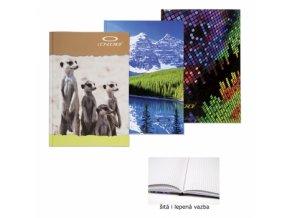 Záznamní kniha CONCORDE A6 čtvereček, 96 listů