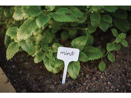 Menovky na označenie rastlín 15 x 5,5cm (10 ks + ceruzka)