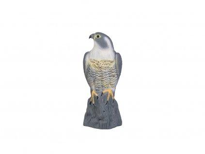 Bradas Plašič ptáků sokol stojící 3D maketa CTRL-BR103
