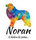 noran-eshop.cz
