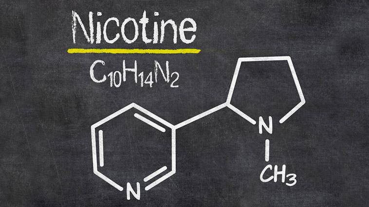 Látky obsažené v nikotinových sáčcích