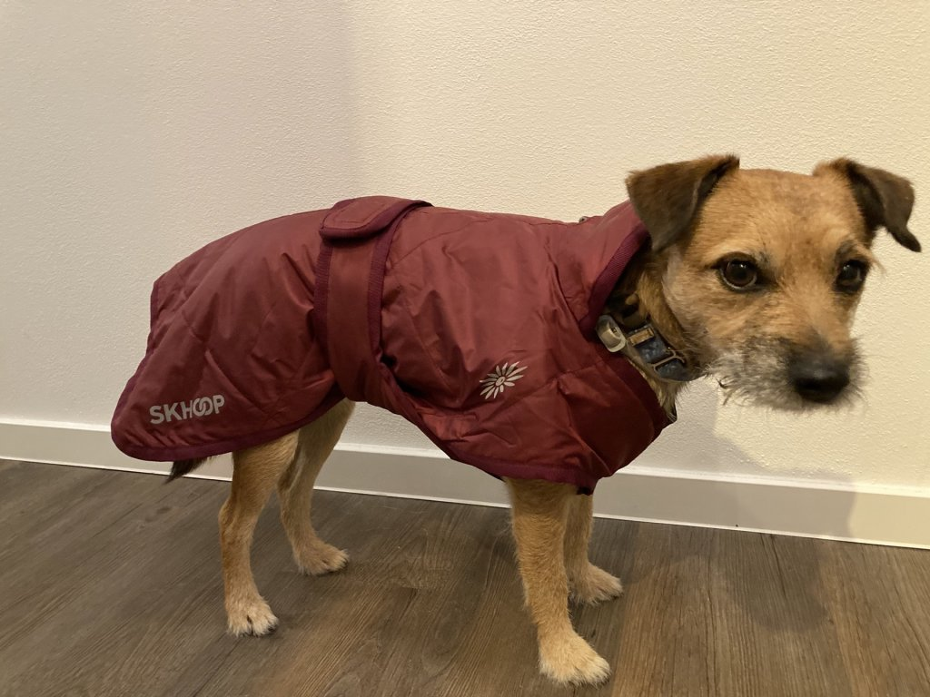 Zimní psí kabát Nikita Dog Coat SKHOOP - ruby red