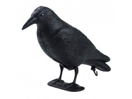 Havran vizuální odpuzovač ptáků holubů špačků