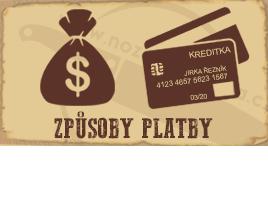 Způsoby platby