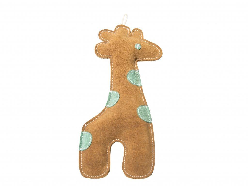 Scooby giraffe