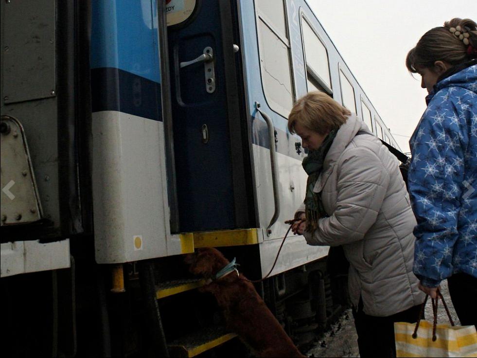 nastup-do-vlaku-bez-nuga