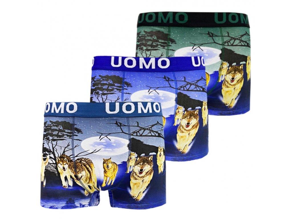UOMO7 L