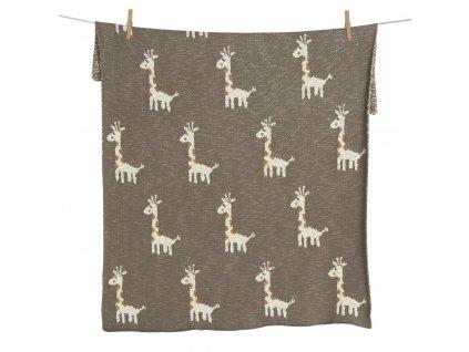 Žirafa 80x100