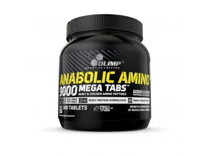 Anabolic Amino 9000 booklet DE 0000