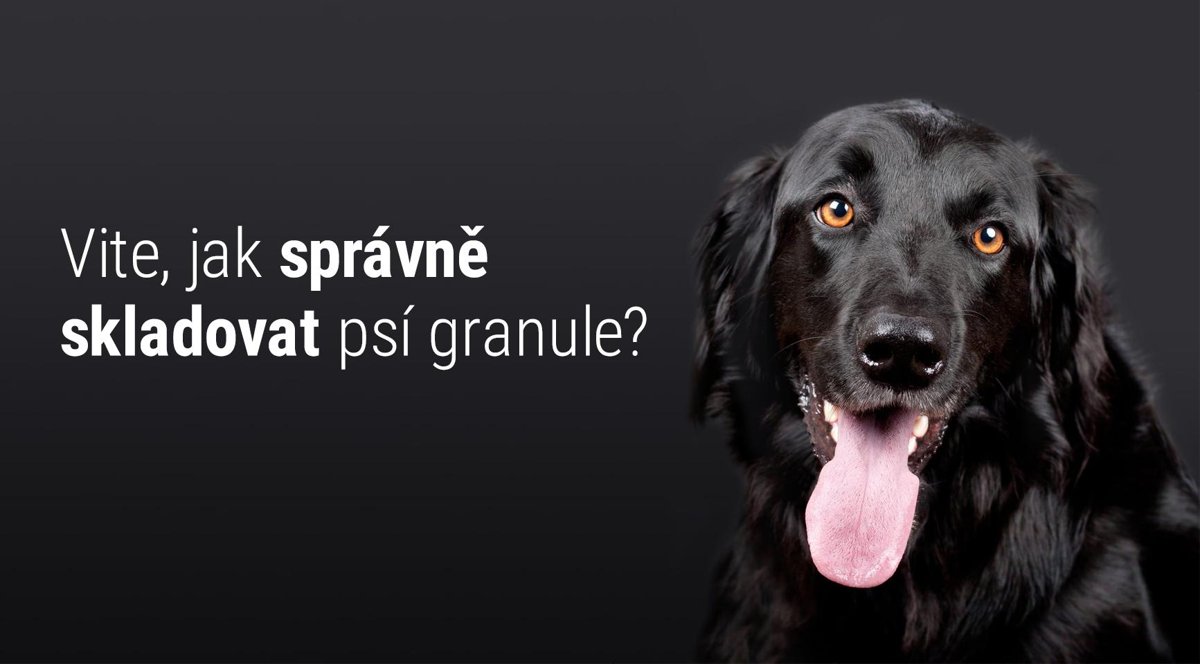 Tipy jak správně skladovat psí granule
