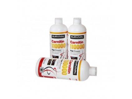 Carnitin 110000 Fair Power® 1L