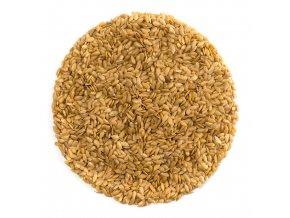Lněné semínko zlaté 2