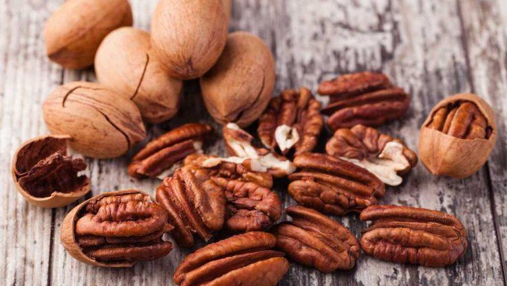 Pekanový ořech - poklad z Ameriky