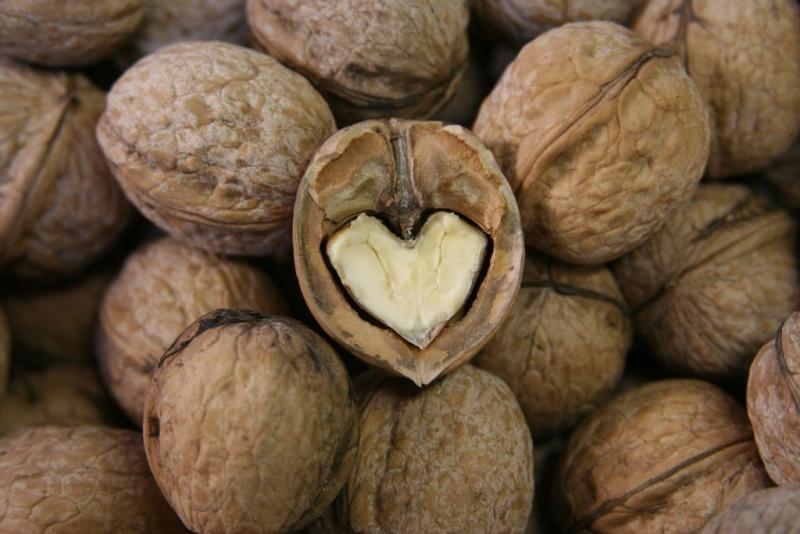 Vlašské ořechy - Superpotravina plná zdraví