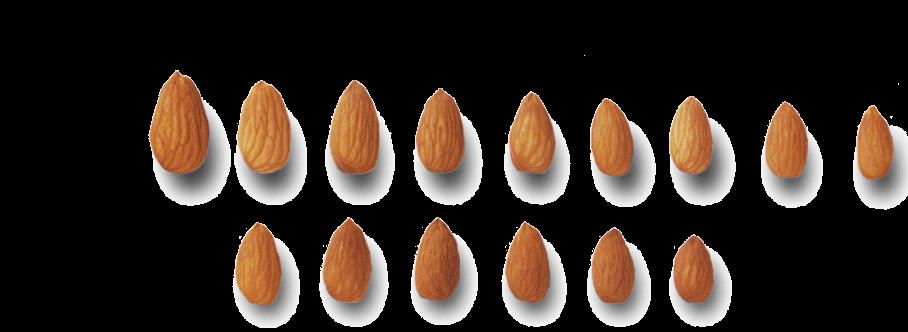 velikost mandlí