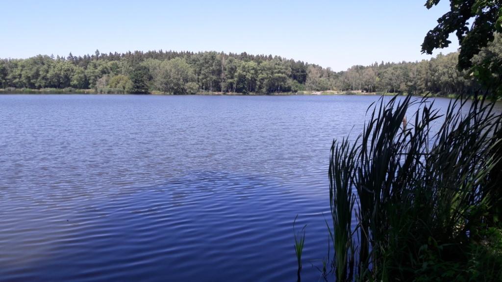 Mini Nordic Walking výlet (2 hodiny)