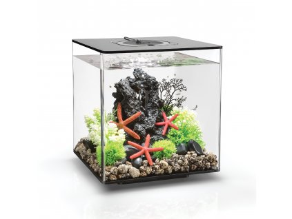 biOrb CUBE 30 LED black
