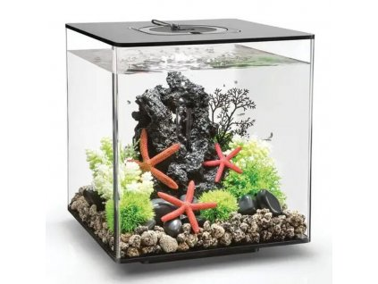 oase biorb cube 30 mcr cierne 100039364266