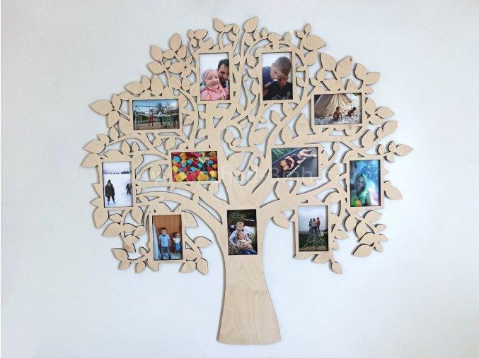 Fotorámeček - Dřevěný strom BUSHY