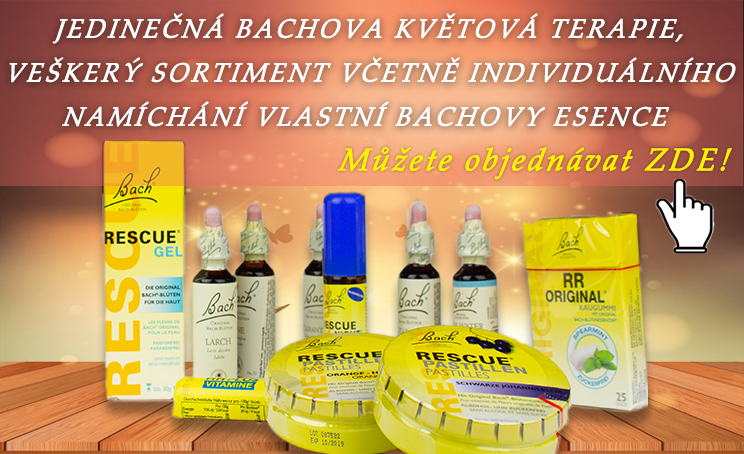 Banner Bachovky