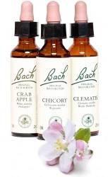 Bachova květova terapie - 30 min