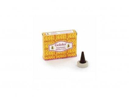 Goloka cones