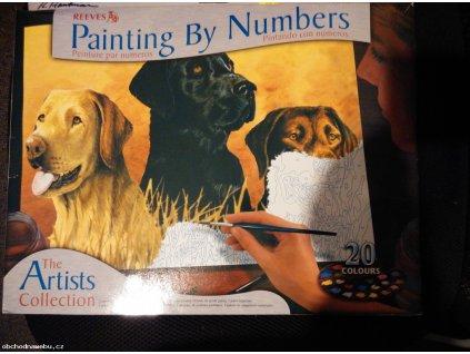 Malování podle čísel - Psi (Reeves)