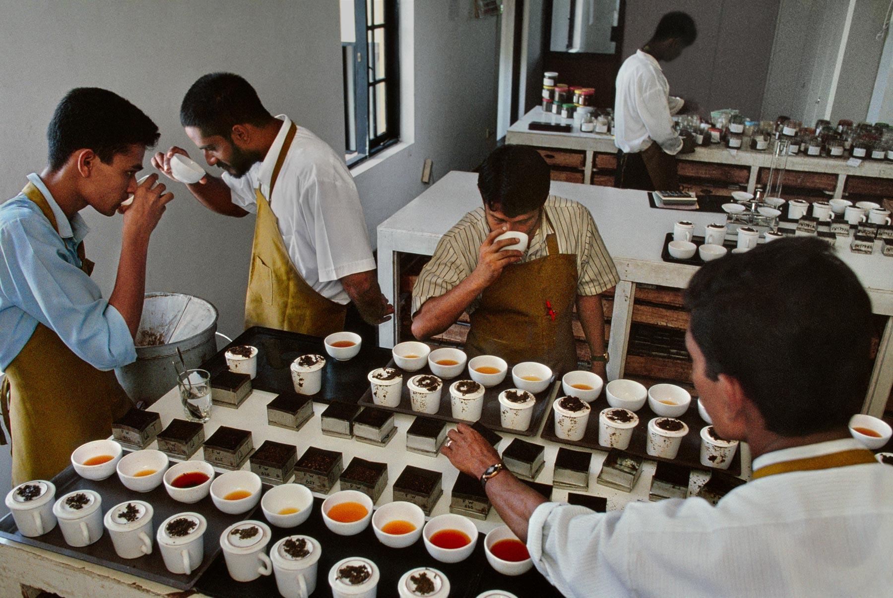 Obecné tipy a rady pro přípravu čaje