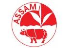 Černé čaje - Assam