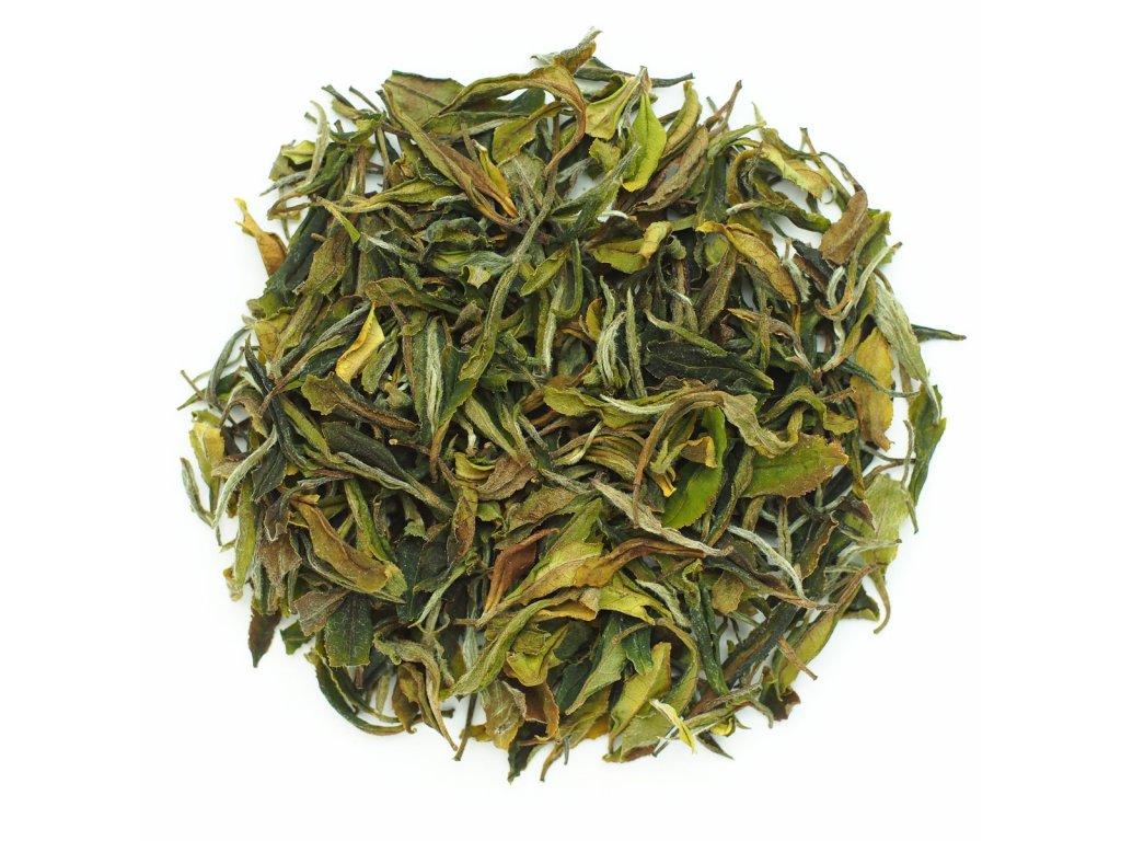 Gruzie Imereti Wild White Tea