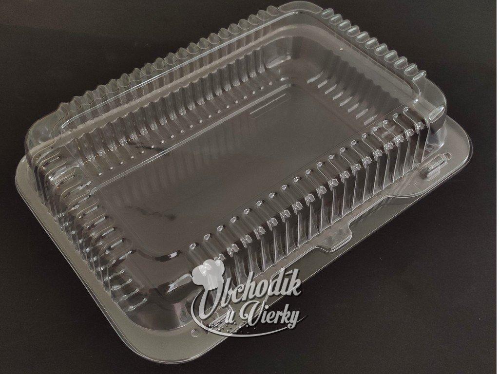 00840 Plastový obal obdĺžnik 22 x 14 x 5,5 cm (6K)