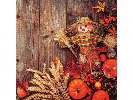 Jesenný motív servítky 33 x 33 cm (3 vrstvové) 20 ks