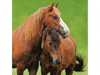 Koníky (kôň) servítky 33 x 33 cm (3 vrstvové) 20 ks