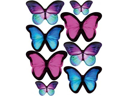 amazonsti motyli