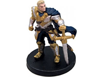 Human Paladin #8 D&D Icons of the Realms