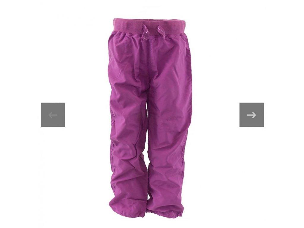 pd fialové 1