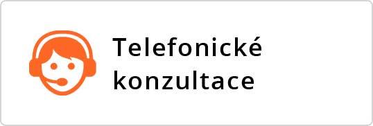 Tteleofn-konzult-100