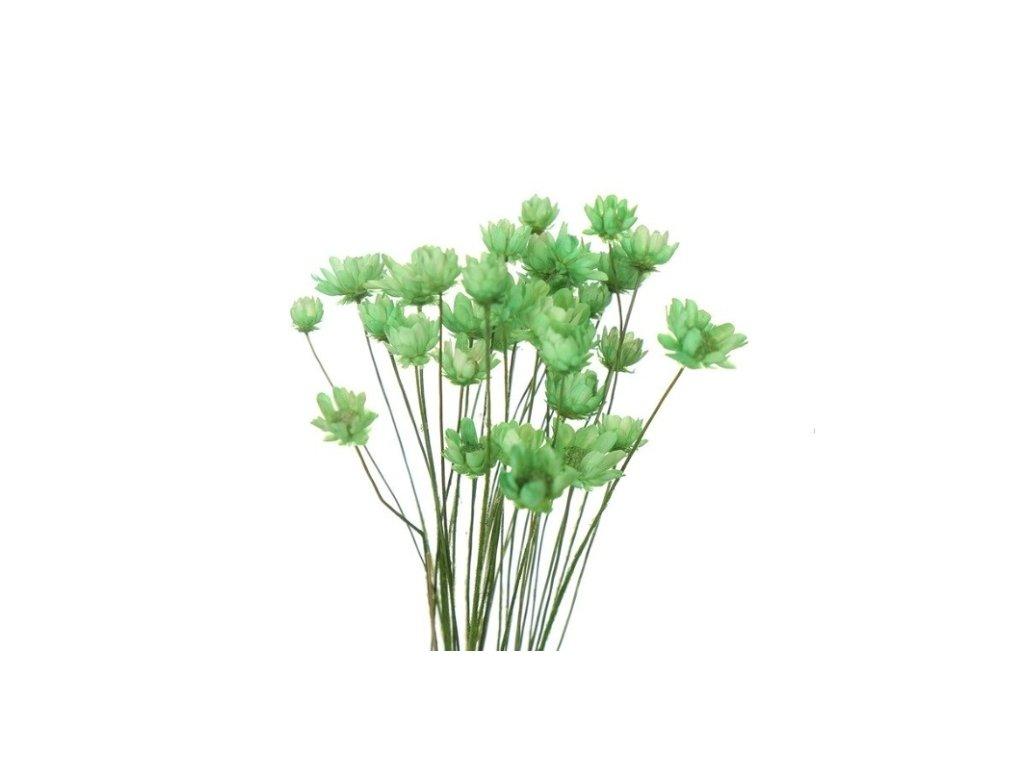 dekorace do pryskyrice susene kvetiny green