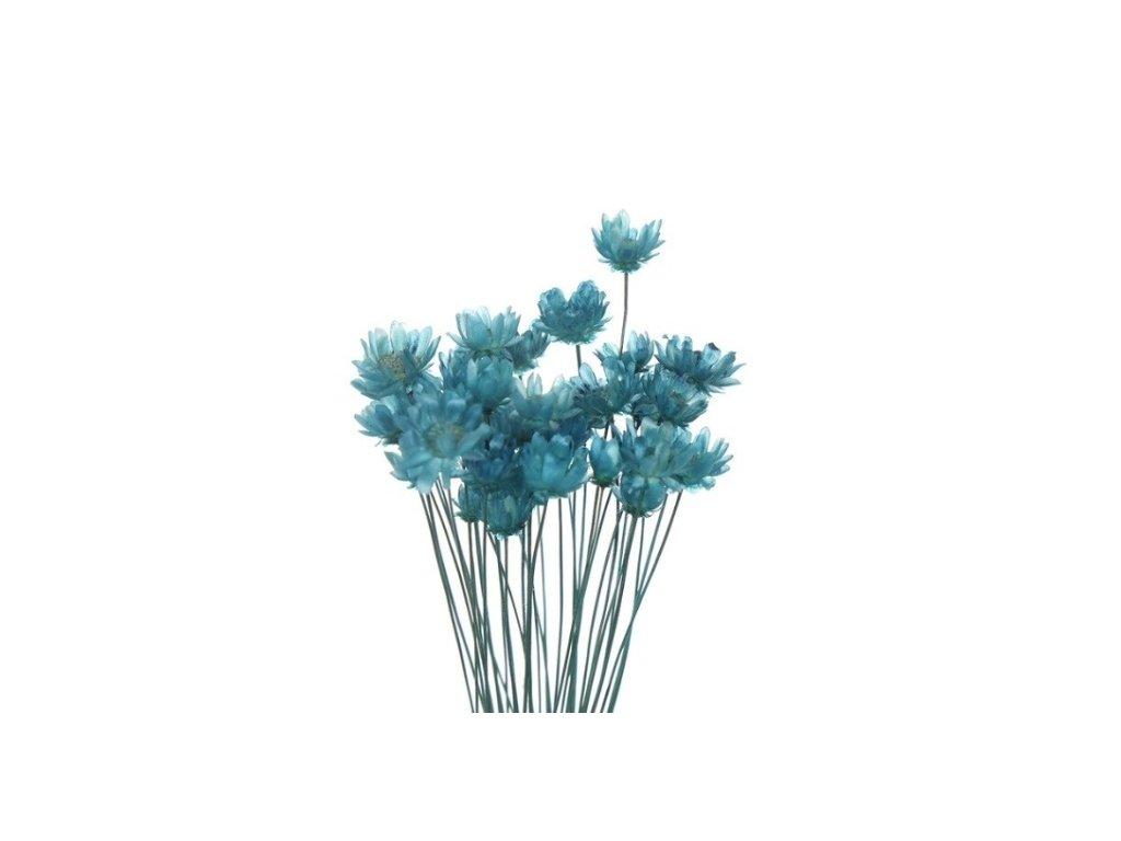 dekorace do pryskyrice susene kvetiny royal blue