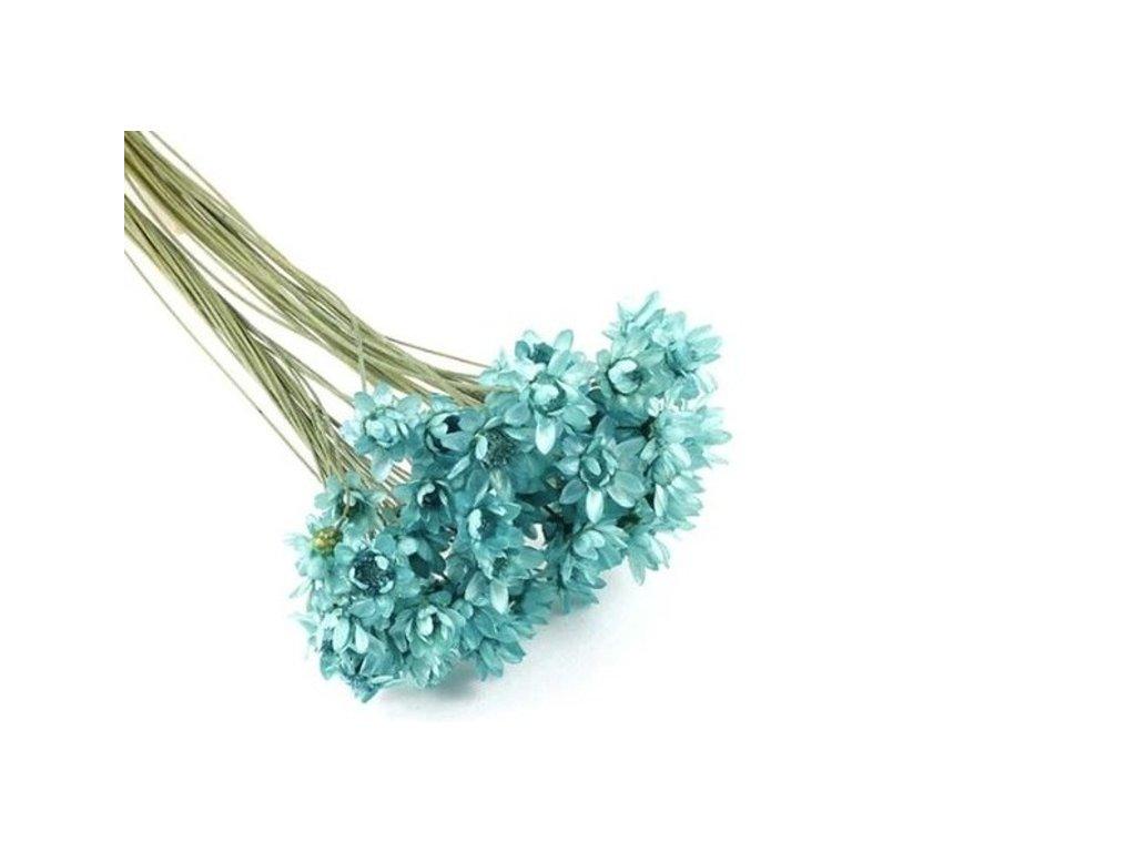 Sušené květy do křišťálové pryskyřice Tyrkys L6 II. jakost 12ks
