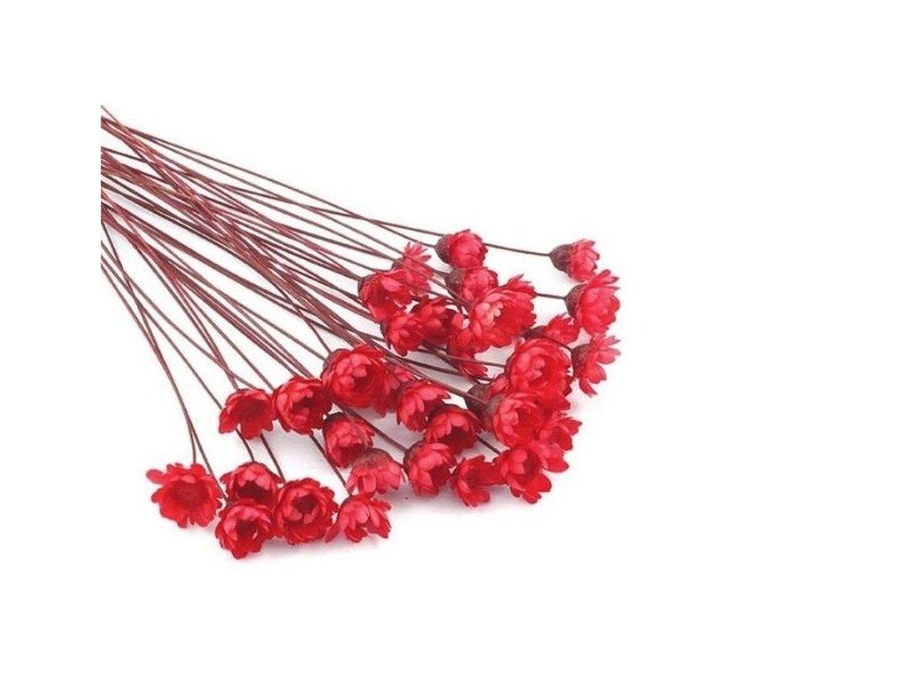Sušené květy do křišťálové pryskyřice Red L7 II. jakost 12ks