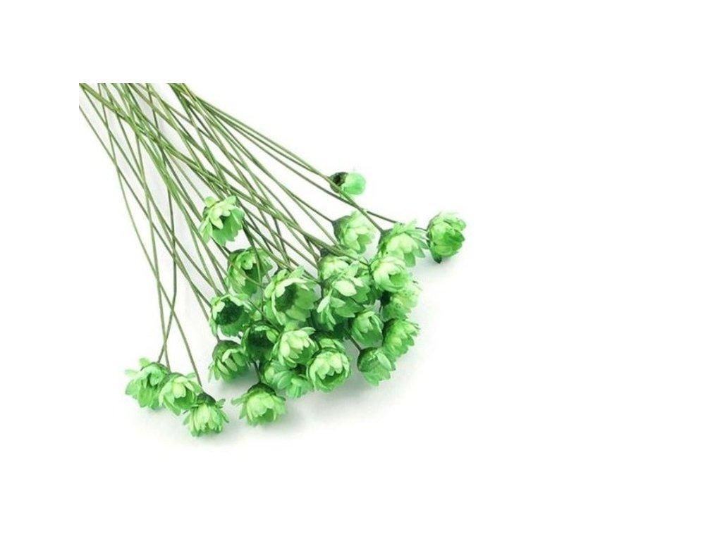 Sušené květy do křišťálové pryskyřice Green L8 II. jakost 12ks