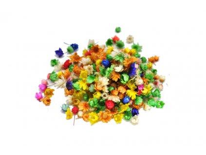 Sušené barevné květiny 1589 200ks