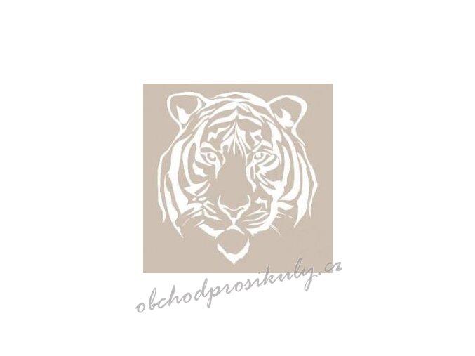 Šablona 21x30 cm, Tygr